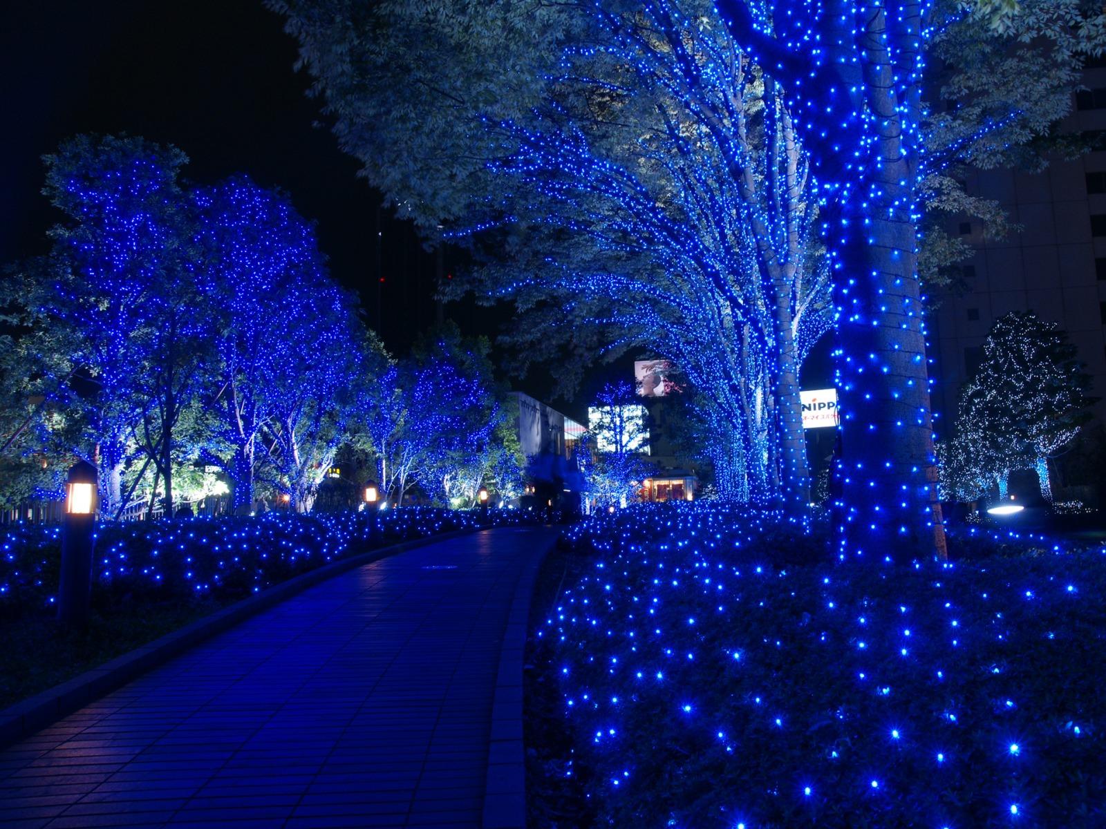 5 Hal Luar Biasa Yang Dimiliki Tokyo Ketika Musim Salju
