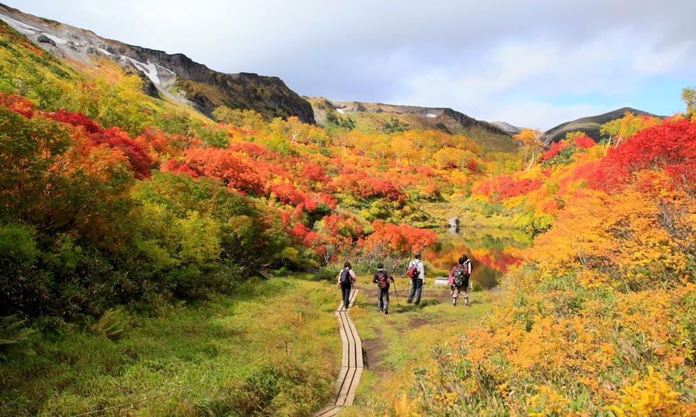 3 Tempat Terbaik Untuk Menikmati Indahnya Musim Gugur Jepang