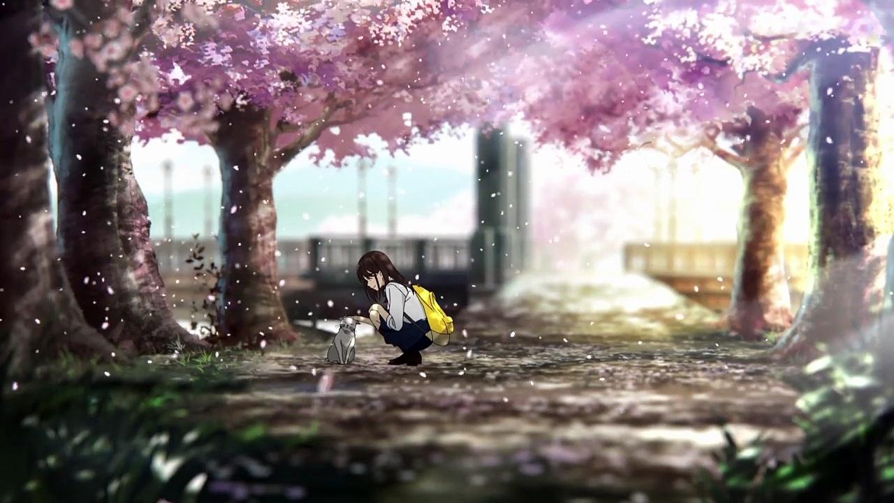 Novel Let Me Eat Your Pancreas Dapatkan Adaptasi Anime