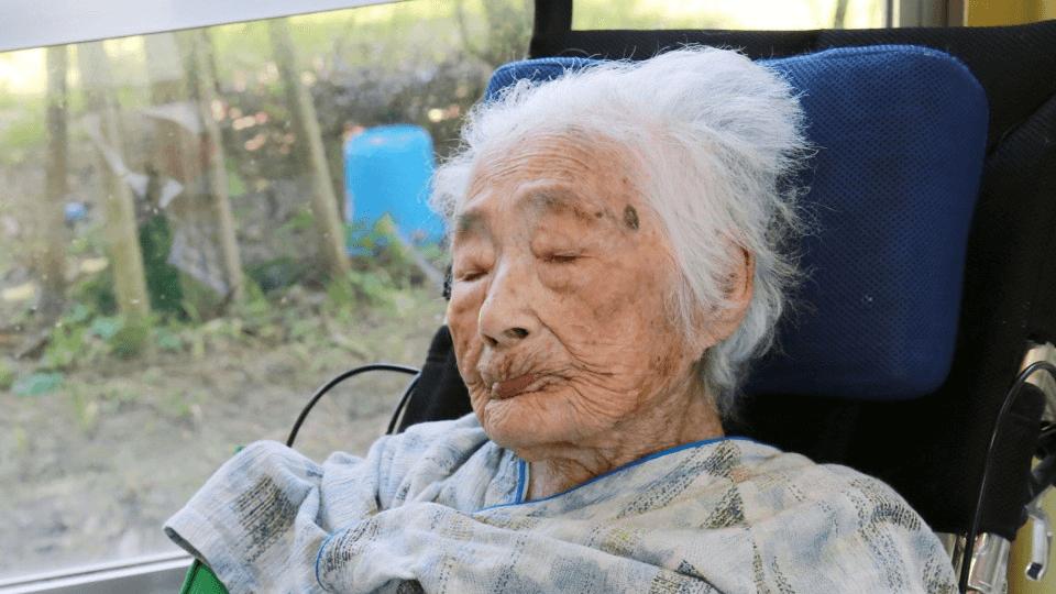 Nabi Tajima Orang Tertua Di Dunia Telah Meninggal Dunia