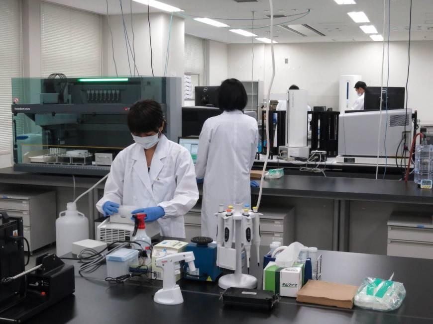 Peniliti Jepang Sukses Uji Coba Transplantasi Rahim Pada Hewan Kera