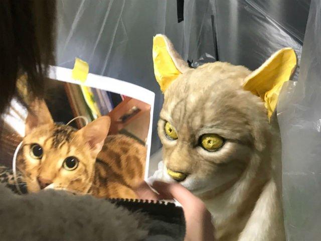 Ingin Jadi Kembaran Binatang Peliharaan Anda ? Di Jepang Kini Tersedia Layanan Unik Yang Dapat Mewujudkannya !
